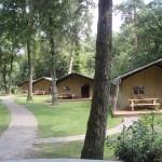 Camping De Hertshoorn de waard tent