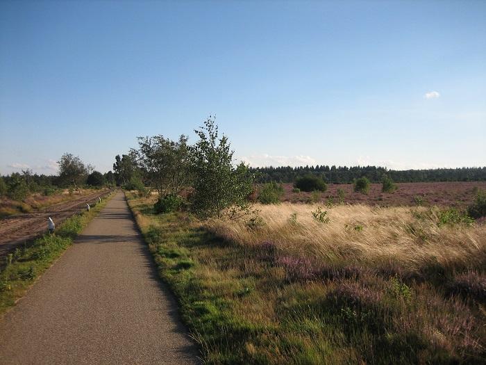 Fietspaden in de omgeving