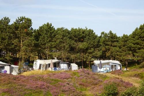 Kampeerplaatsen op Texelcamping Loodsmansduin