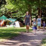 RCN het Grote Bos kampeerplaatsen