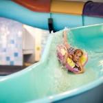 zwembad met glijbaan op bungalowpark