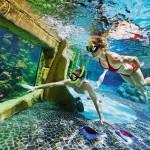 zwemmen en vissen kijken