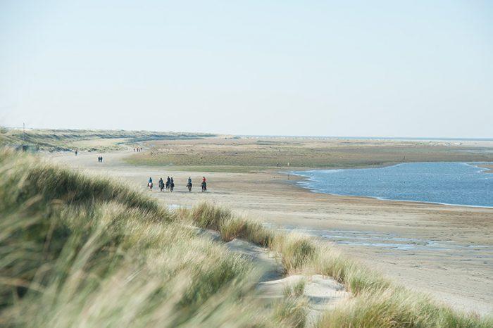 Strand, de duinen en de zee