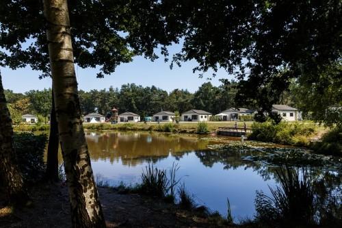 Camping Flaasbloem