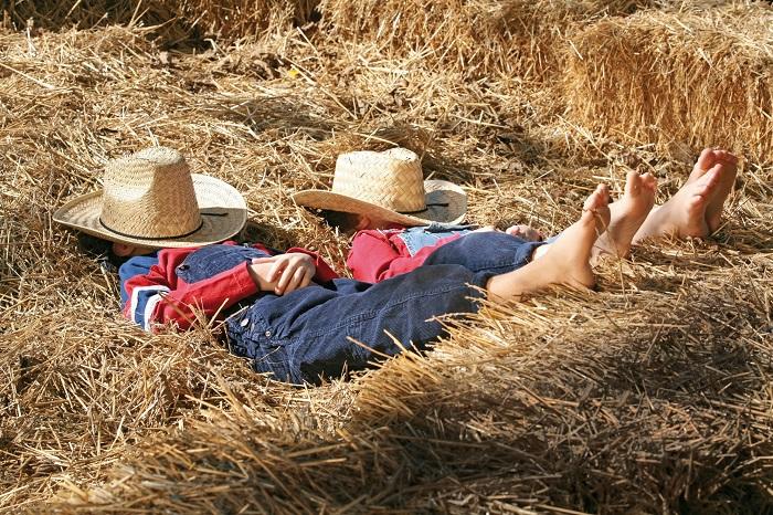 Slapen in het hooi