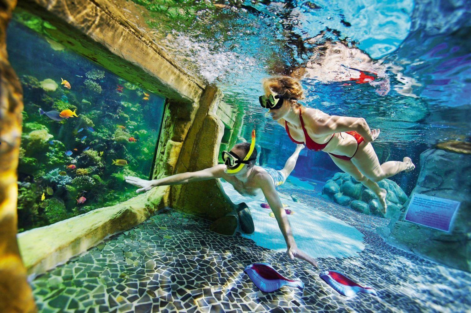 Subtropisch zwembad op een vakantieparken in Nederland