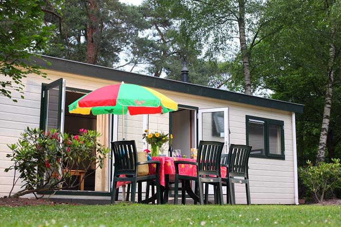 Chalet Bospark De Schaapskooi