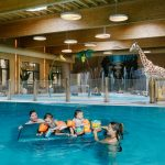 Binnenzwembad Safari Resort Beekse Bergen