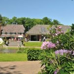 TopParken Landgoed de Scheleberg uitzicht op de huisjes