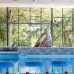 Binnenzwembad op Dormio Resort Maastricht