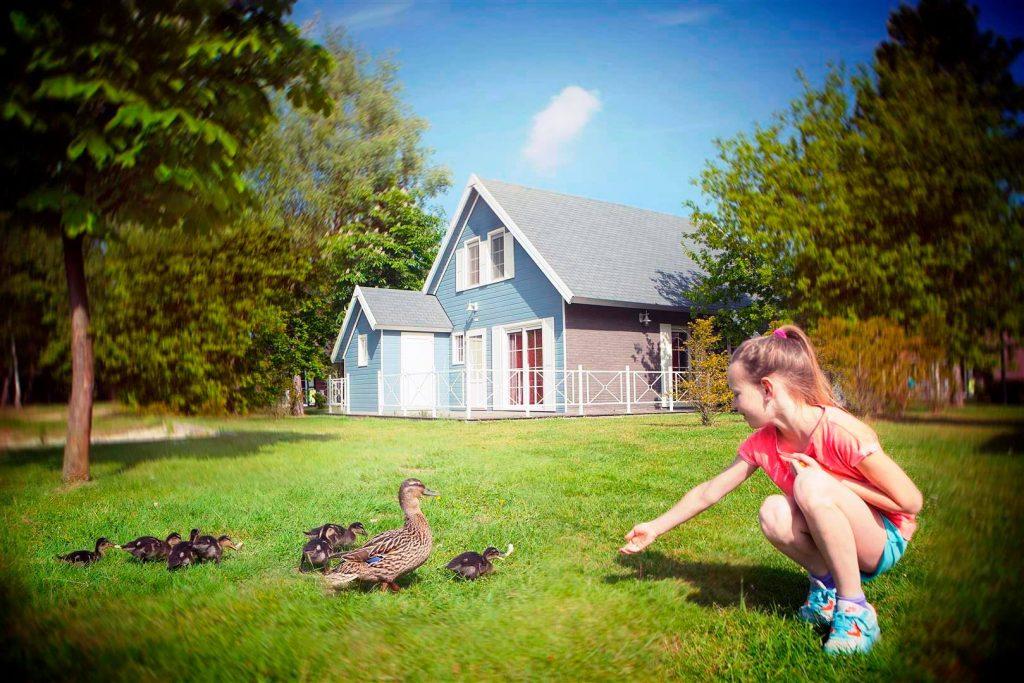 Vakantiepark België: Molenheide